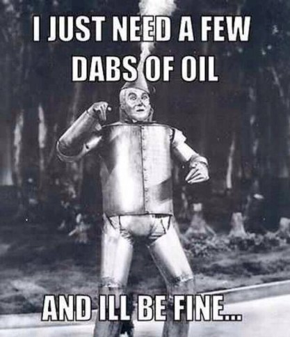 Image result for the tin man stiff