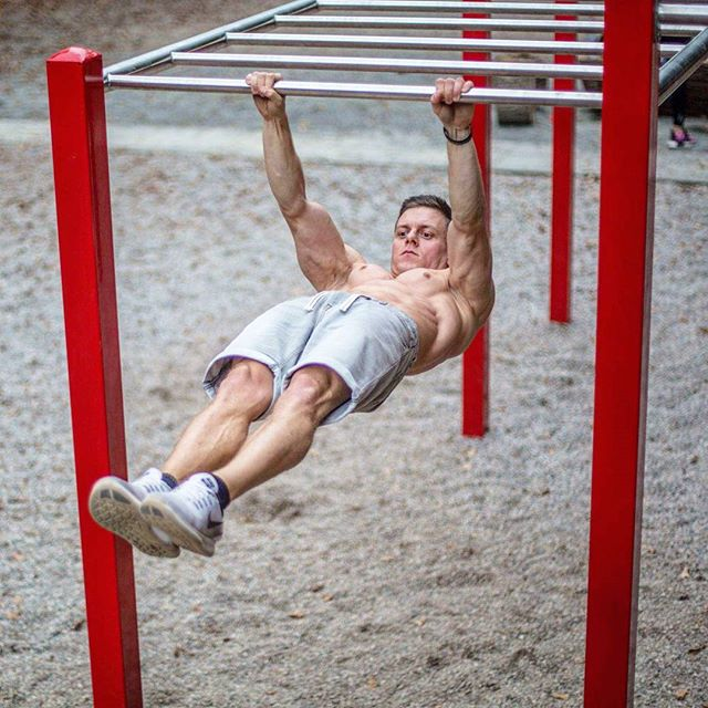Image result for sven calimove front lever